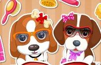 Cute Puppy Salon