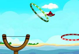 Angry Birds Slingshot Fun…
